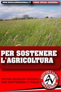 SN AGRICOLTURA2011